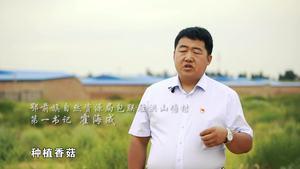 包联驻村精准脱贫系列公益宣传之六(丰收篇)